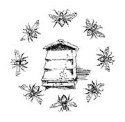 Beehive Montessori Amersham Chiterns